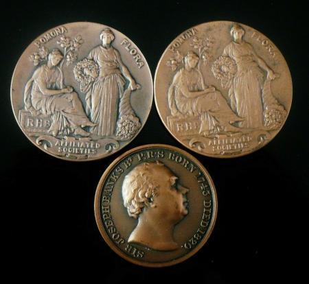 Bronze Horticultural Medallions